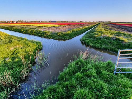 Crossroad (crosswater), landscape in the Netherlands