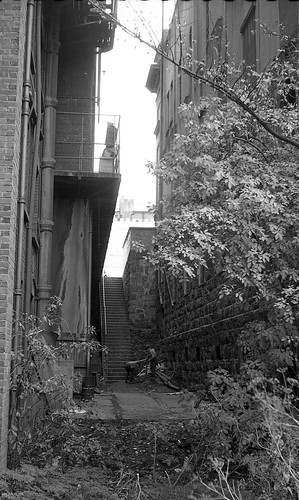 Stairs off Moray Place, c1971