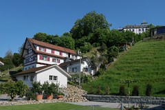 Rheineck - Burggüetli