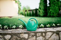 Green plastic bucket closeup.