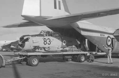 27 November 1975, RNZAF Harvard NZ1083 dismantled on trailer being loaded into Hercules NZ7004 at Whenuapai after landing accident at Kaikohe