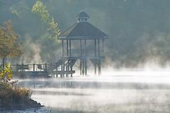 Lake Artemesia 133