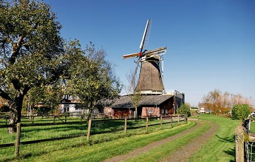 Mühle in  Oud-Zevenaar, De Hoop