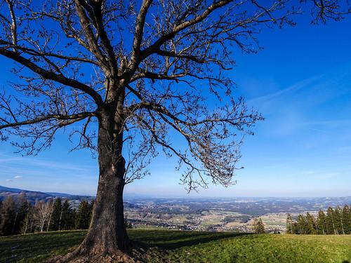 Schwanberg: W23 Wanderung nach St. Anna