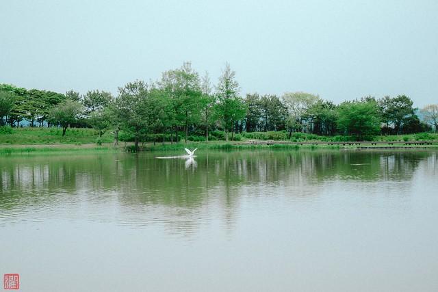 Photo:P1030073-5 By zunsanzunsan