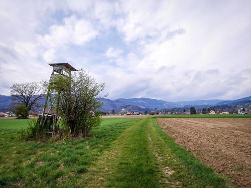 Schwanberg: W36 Wanderung rund um Schwanberg (Bahnhofweg)