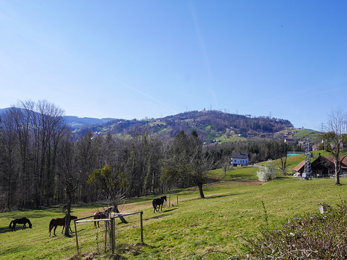 Schwanberg: W1 Wanderung zum Schloss Hollenegg und weiter zur Wolfgangikirche