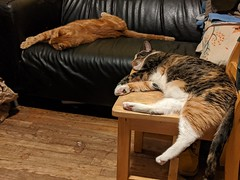 Loungeabouts