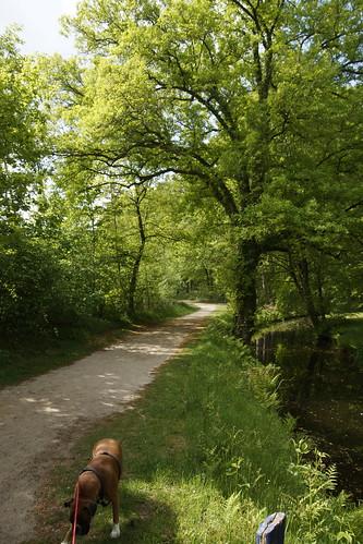 Landgoed Staverden Wandelroute Rood 17-05-2020