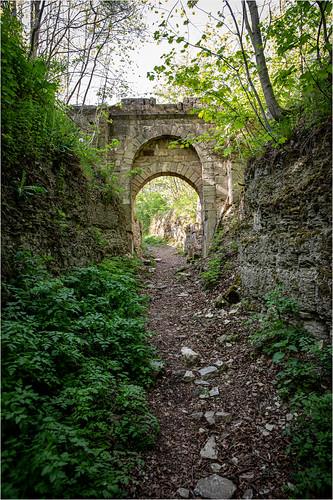 The Gate . Ruins of Hasenburg Castle