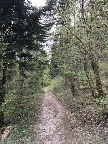 walk in the Jura
