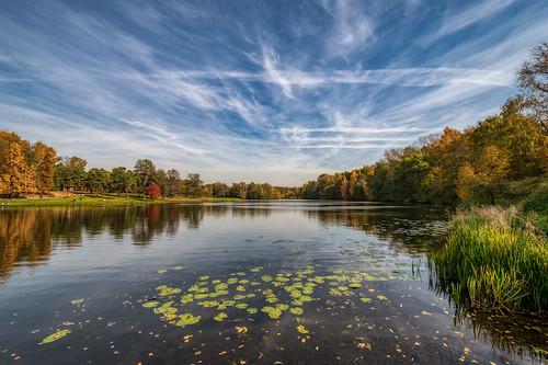 Autumn Day in Kuzminki