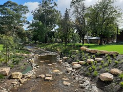 Adelaide. Mitcham. Brownhill Creek flowing through the gardens around the City of Mitcham Library.
