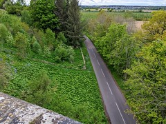 View from West Learmouth Viaduct (no2), May 2020