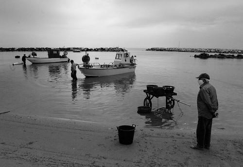 una mattina al porto.