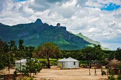 Prison Farm, Uganda