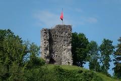 Rheineck - Burgstock (History)