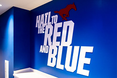 Hail to the Red and Blue