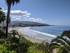 Laguna Beach opens!