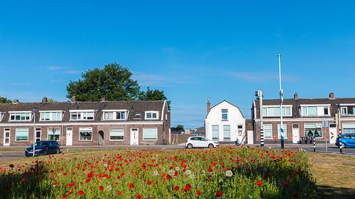 Hillegom - Nederland.