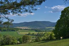 View to Unterwirbach