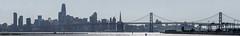 middle harbor san francisco skyline panorama