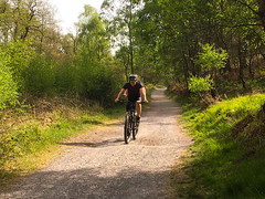 Cycling, Stepping stones, Sherbrook Valley, England