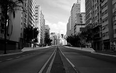 urban horizon.