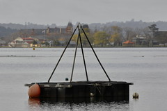 Rowing Buoy