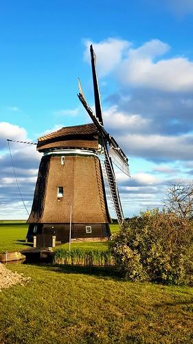 Dutch scenery