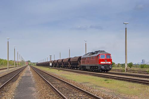 DB Cargo 232 117, Baalberge (D)