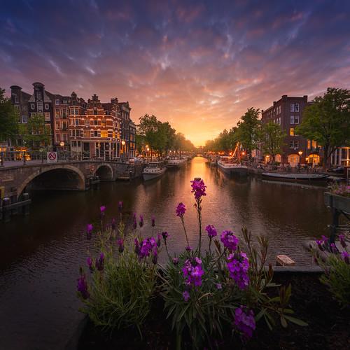 Amsterdam Spring Evening