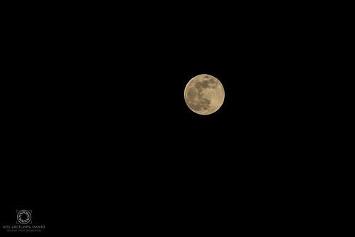 Der Mond – ständiger Begleiter der Erde…