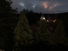 Like little bits of lightning