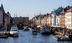 Busy Nyhavn 2019