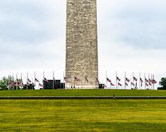 2020.05.24 DC People and Places, Washington, DC USA 145 57244