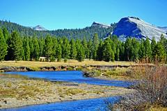 Tuolumne River, Yosemite High Country 2019