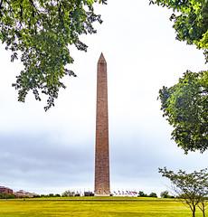 2020.05.24 DC People and Places, Washington, DC USA 145 57242