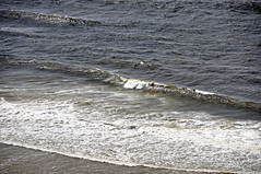Breaking waves (Pacific Ocean shoreline north of Florence, Oregon, USA) 5