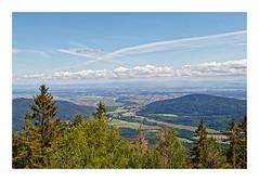 Plaine d'Alsace & Sélestat