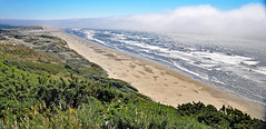 Pacific coast (north of Florence, Oregon, USA) 3