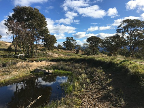 Canberra Centenary Trail - No 11 - Stromlo Forest Park to Chapman