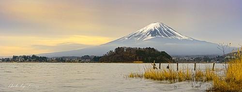 Majestic Fujisan