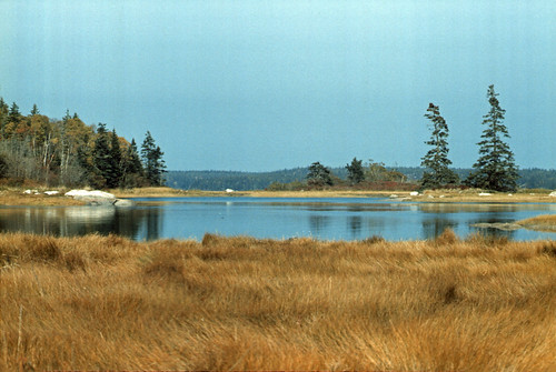 Vinalhaven October 1984 RGB 27