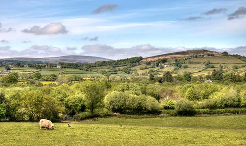 The north-east of Dartmoor