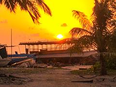 Hangnaameedhoo island, Maldives, 马尔代夫