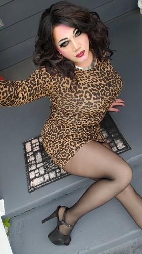 Leopard & Tights
