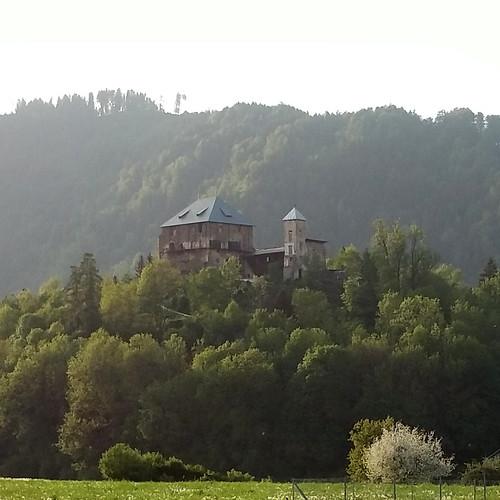 Burg Haimburg