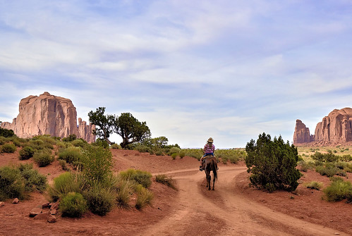 A Horse with no Name - Monument Valley