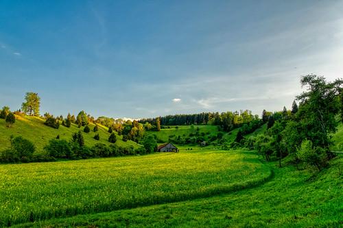 Bergle near the Neckarburg